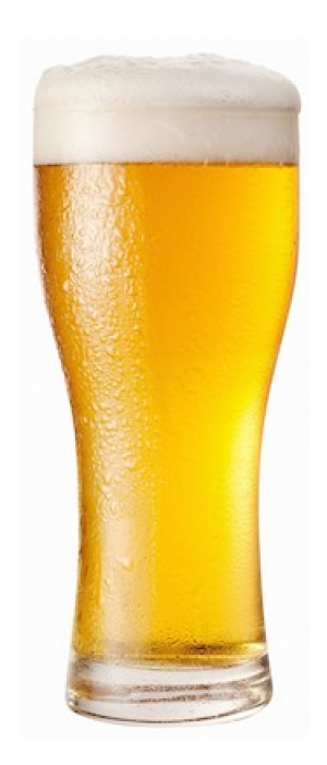 1956 Golden Ale by Bootstrap Brewing Company in Colorado, United States