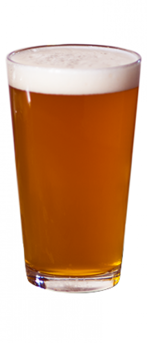 Archangel Nitro Pale Ale by All Saints Brewing Company in Pennsylvania, United States