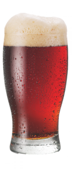 Red Ale by All Saints Brewing Company in Pennsylvania, United States