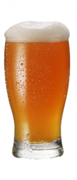 IPA by Amador Brewing Company in California, United States