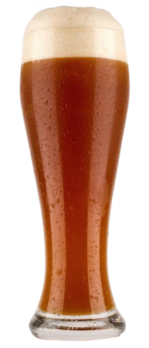 Ambacht G++ (Gee-plus-plus) Ale by Ambacht Brewing in Oregon, United States