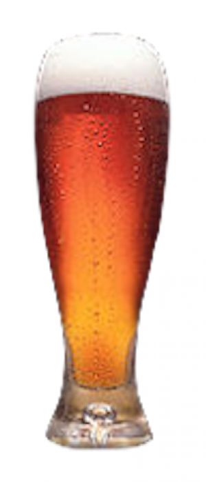 Amberghini by M.I.A. Beer Company in Florida, United States