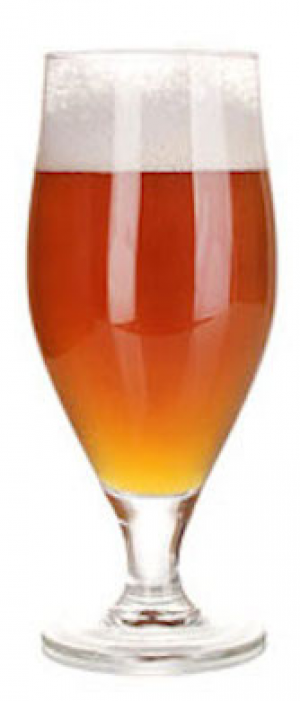 Amber's Lager by Irwin Brewing Company in Colorado, United States