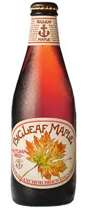 BigLeaf Maple by Anchor Brewing Company in California, United States