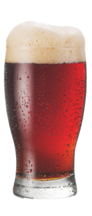 Altera Red Ale by Baerlic Brewing Company in Oregon, United States