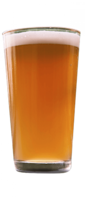 Bailiwick by HopFusion Ale Works in Texas, United States