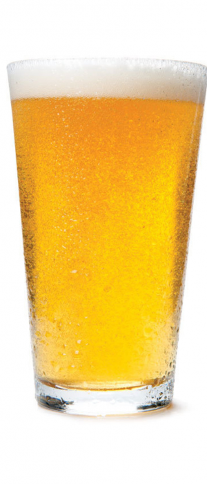 Citra Fresca by Barebottle Brewery in California, United States