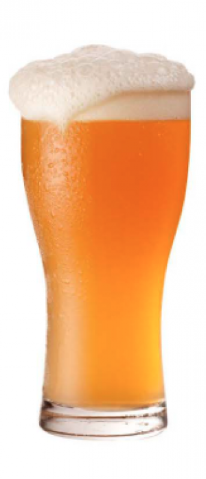 Simcoe Secco by Barebottle Brewery in California, United States