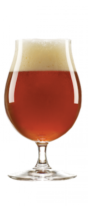 Belgian Tripel by Village Idiot Brewing Company in New Jersey, United States
