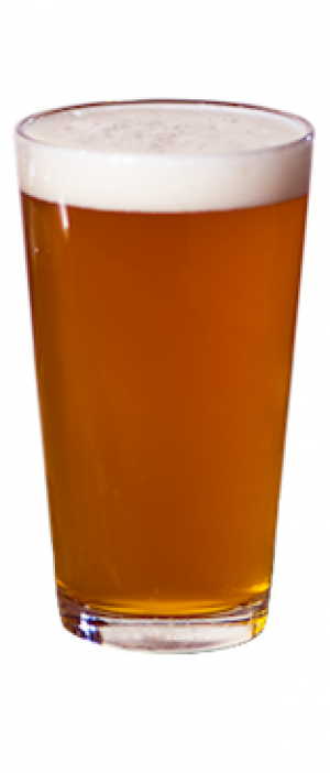 Pumpkin Ale by Bier Brewery and Taproom in Indiana, United States