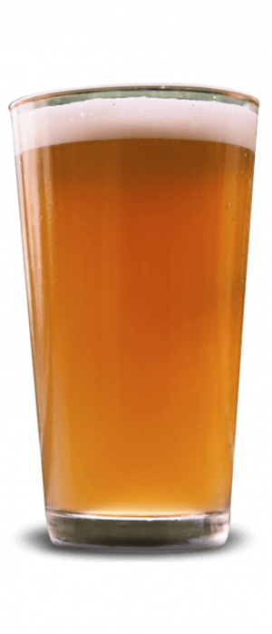 40K Honey Wheat Ale by Blue Corn Brewery in New Mexico, United States