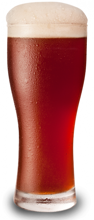 Brewer's Boot Amber Ale