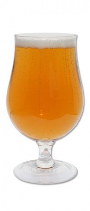 Brett Saison 500 by Last Best Brewing and Distilling in Alberta, Canada