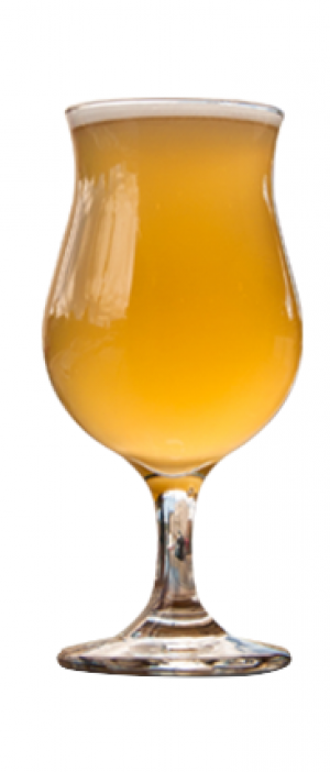Brut Mimosa IPA by Eighty-Eight Brewing Co. in Alberta, Canada
