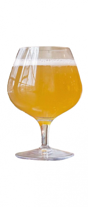 Burlington Weisse by First Street Brewing Company in Nebraska, United States