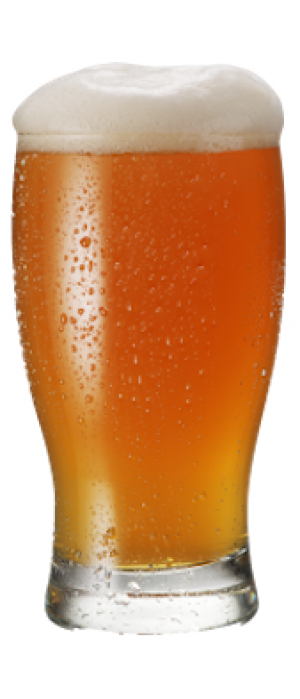 Single Hop Experimental Bru 1 by Cannonball Creek Brewing Company in Colorado, United States