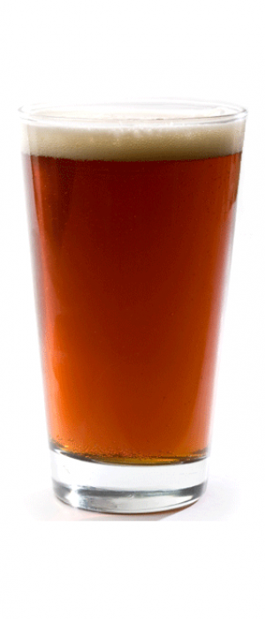 The Cardinal Double India Red Ale by Citizen Brewing Company in Alberta, Canada