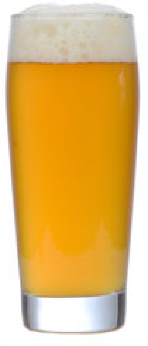 Biere de Mars by Carter's Brewing in Montana, United States