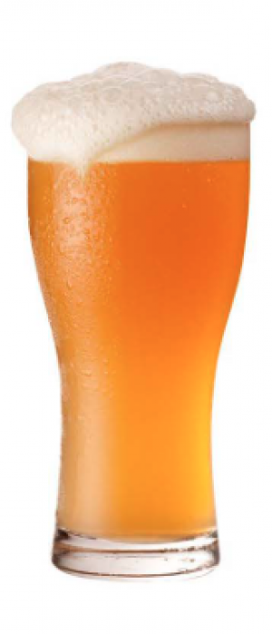 Play Gloria - Hazy Pale Ale by Center Ice Brewery in Missouri, United States