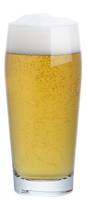 Hop Theory by Central Standard Brewing in Kansas, United States