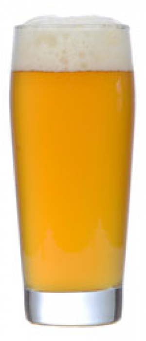 Sundog Kölsch by Chama River Brewing Co. in New Mexico, United States
