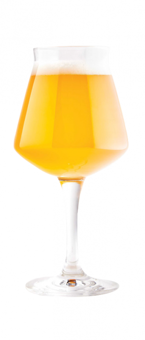 Champagne Toast by Wander Brewing in Washington, United States