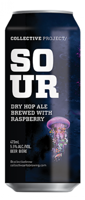 Raspberry Dry Hopped Sour by Collective Arts Brewing in Ontario, Canada