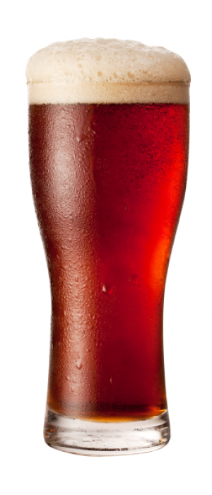 Copper Jacketed Amber by Immersion Brewing in Oregon, United States