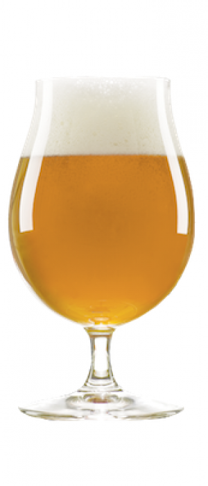 Zoned AG Apricot by Corralitos Brewing Company in California, United States