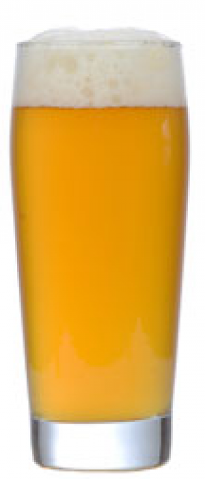 Forest Log by Cumberland Brewing Company in British Columbia, Canada