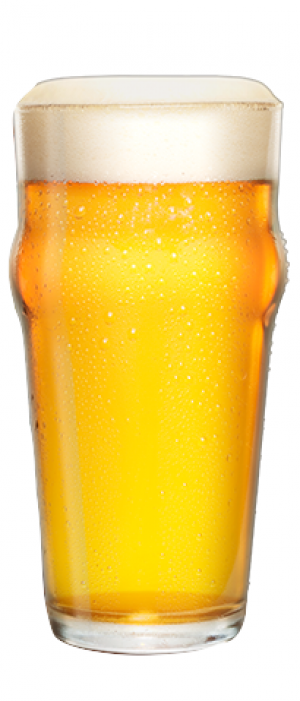 Ole Bagger by Daytona Beach Brewing Company in Florida, United States