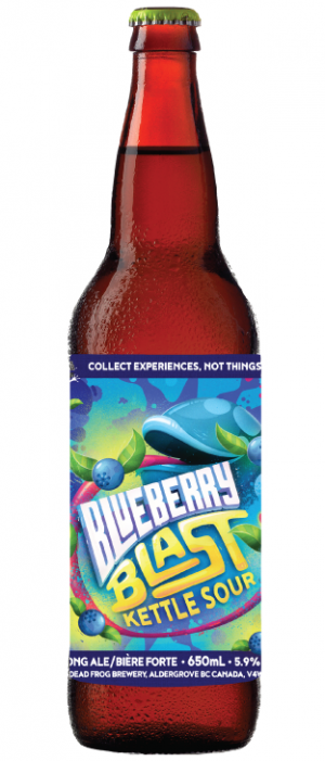 Blueberry Blast Kettle Sour