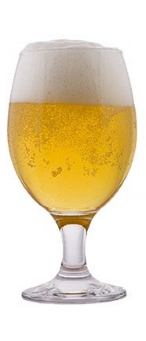 Shimmer Pils by Discretion Brewing in California, United States
