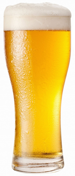 Golden Rule Pilsner by Druthers Brewing Company in New York, United States