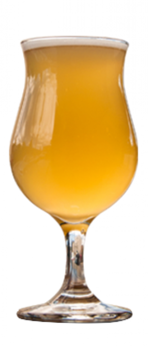 Kirby Pucker #8 by Eastlake Craft Brewery in Minnesota, United States