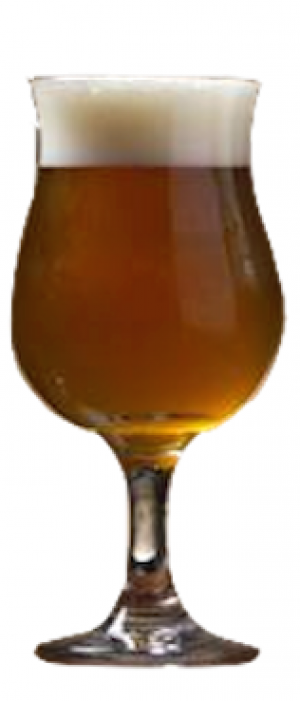 Elettaria Flanders Blend by 42 North Brewing Company in New York, United States