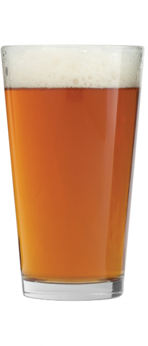 Extra Ball by WoodGrain Brewing Co. in South Dakota, United States