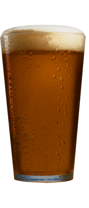 Falling Leaf Lager by Hop Dogma Brewing Company in California, United States