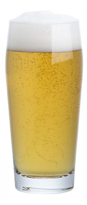 Fast Eddy's Light Lager by Prince Eddy's Brewing Company in Ontario, Canada