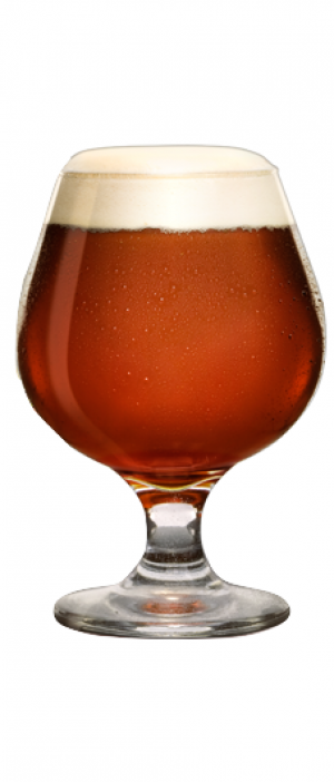 Beer Curious? by Ferment.Drink.Repeat.(FDR) Brewery in California, United States