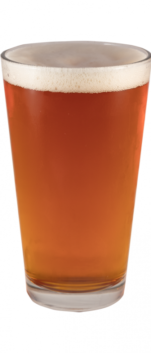 Leg Lifter Pale Ale by FiftyFifty Brewing Company in California, United States
