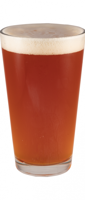 Rockslide IPA by FiftyFifty Brewing Company in California, United States