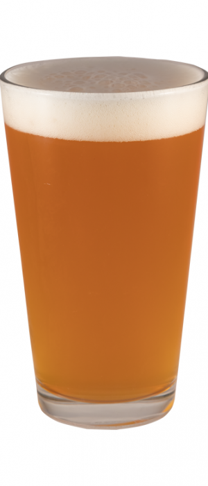 Session 267 IPA by FiftyFifty Brewing Company in California, United States