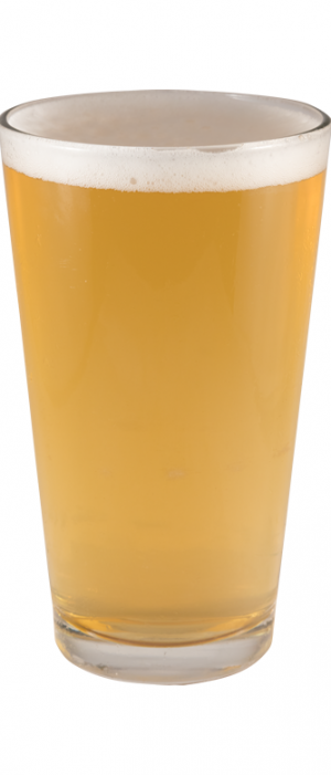 Truckee Blonde Reserve by FiftyFifty Brewing Company in California, United States