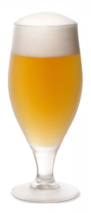 First Street White Ale by First Street Brewing Company in Nebraska, United States