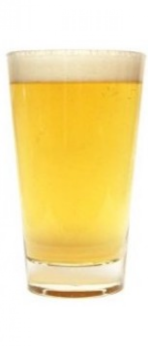 Mainstreet Roasted Pineapple Sour by Fitzsimmons Brewing Co. in Alberta, Canada