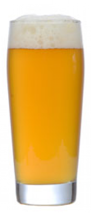 American Wit by The Flagship Brewing Company in New York, United States