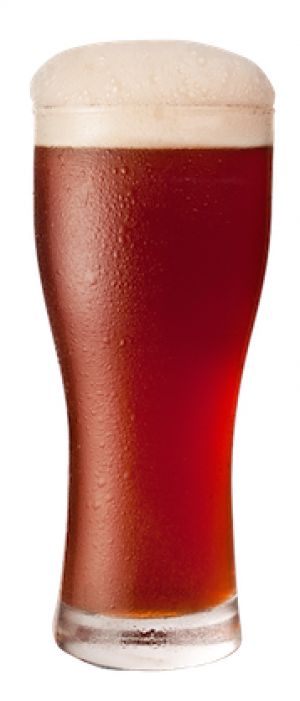 Flanders Red Ale by Bird Dog Brewing in North Dakota, United States