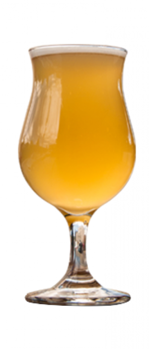 Foeder-aged Golden Sour Ale by Upslope Brewing Company in Colorado, United States