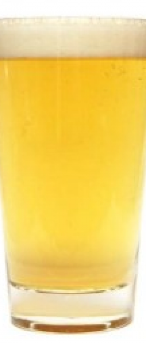 Harvest Wheat Lager by Fox & Hounds Pub and Brewery in Saskatchewan, Canada